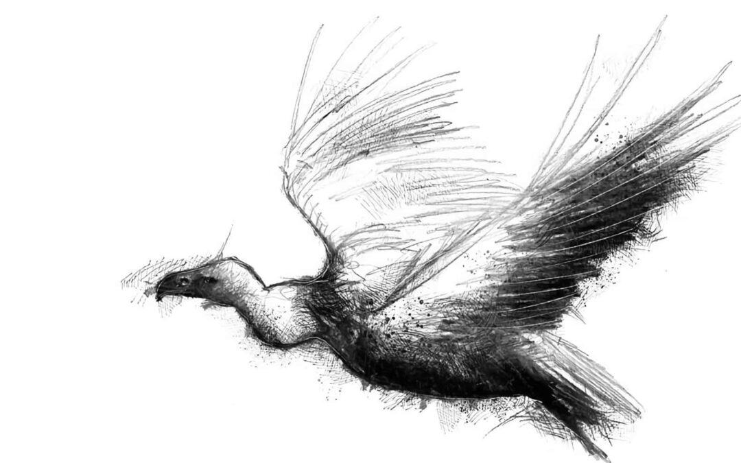 Vulture: A Wake